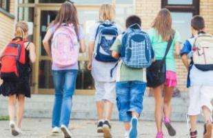 Deleghe Ritiro Alunni Aggiornamenti Scuola Primaria Infanzia